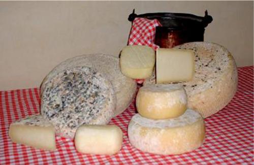 formaggi e latte